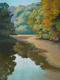THE DONNI DINGMAN MEMORIAL AWARD Green River by Deborah Maklowski